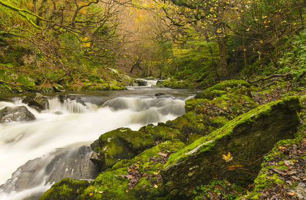 Late Autumn at Watersmeet Canvas Print by Lee Thorne