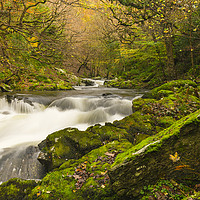 Buy canvas prints of Late Autumn at Watersmeet by Lee Thorne