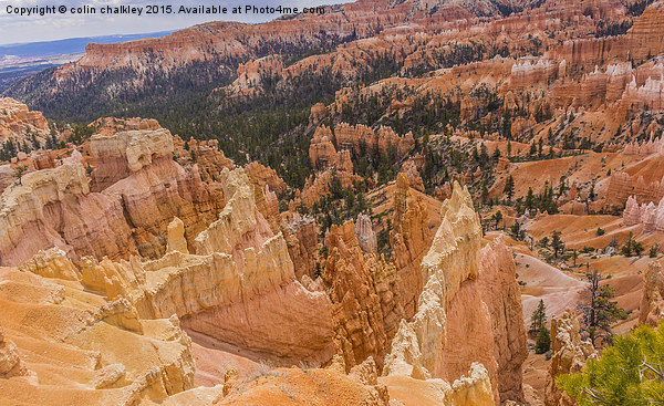 Bryce Canyon - USA Canvas print by colin chalkley