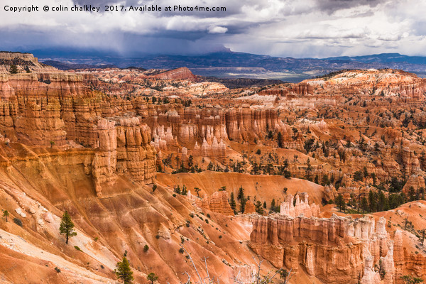 Bryce Canyon Hoodoos - USA Canvas Print by colin chalkley
