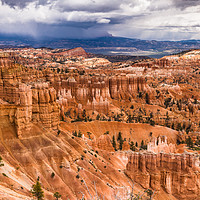 Buy canvas prints of  Bryce Canyon Hoodoos - USA by colin chalkley