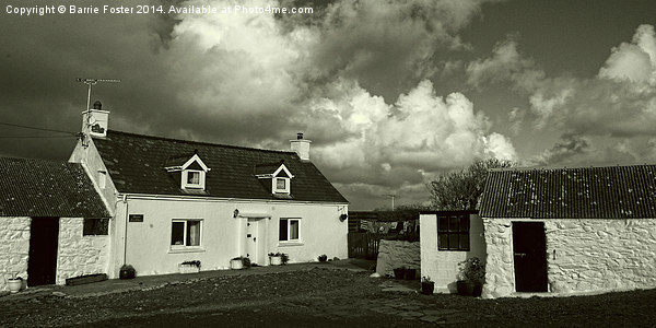 Cottages Near Aberieddy Canvas print by Barrie Foster