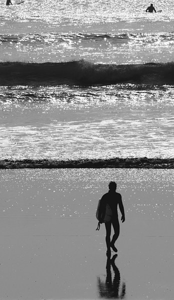 There's a time to surf ... Canvas print by Barrie Foster