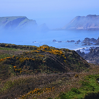 Buy canvas prints of Marloes Sands and Gateholm Island by Barrie Foster