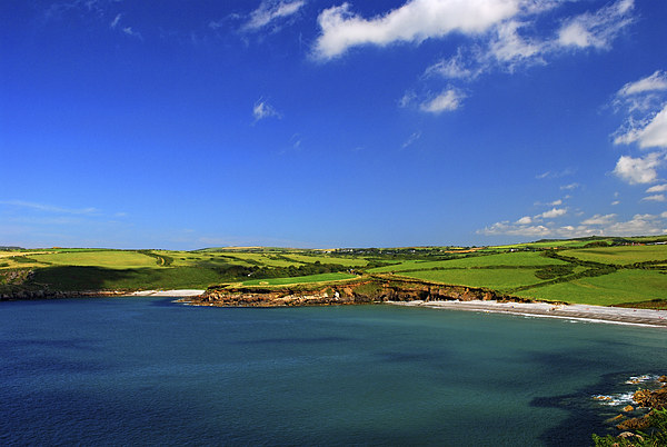 Abermawr and Aberbach Canvas print by Barrie Foster