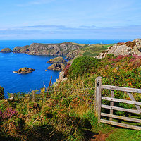 Buy canvas prints of  The Wales Coast Path above Pwllderi by Barrie Foster