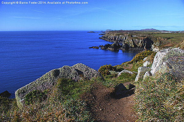 The Wales Coast Path above St Non's Bay Canvas print by Barrie Foster