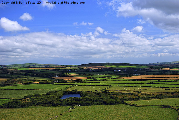 Pembrokeshire Pastoral #1 Canvas print by Barrie Foster