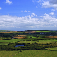 Buy canvas prints of  Pembrokeshire Pastoral #1 by Barrie Foster