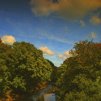 Buy canvas prints of  The Eastern Cleddau by Barrie Foster