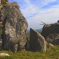 Buy canvas prints of Tŷ Canol, Brynberian by Barrie Foster