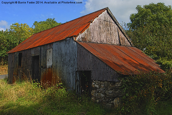 Wriggly Tin: Farm Shed Canvas print by Barrie Foster