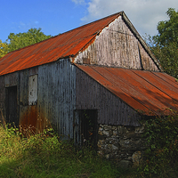 Buy canvas prints of  Wriggly Tin: Farm Shed by Barrie Foster