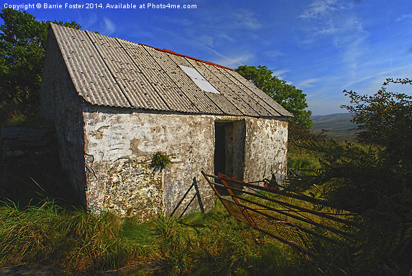 Wriggly Tin: Gwaun Valley Barn Canvas print by Barrie Foster