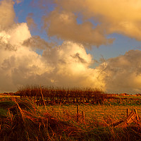 Buy canvas prints of Berea Sunset by Barrie Foster