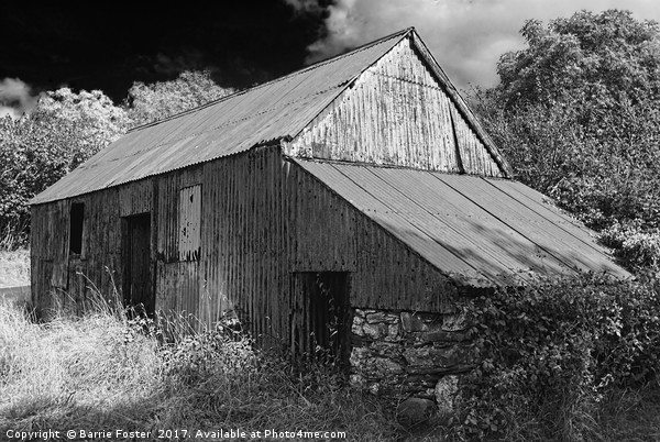 WRIGGLY TIN: FARM SHED, MONO Canvas print by Barrie Foster