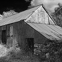 Buy canvas prints of WRIGGLY TIN: FARM SHED, MONO by Barrie Foster