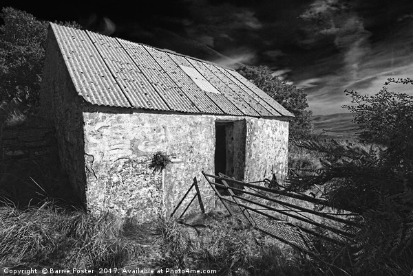 WRIGGLY TIN: GWAUN VALLEY BARN, MONO Canvas print by Barrie Foster