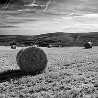 Buy canvas prints of Preseli Backdrop #2 by Barrie Foster