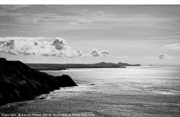 St Davids Head from above Pwllderi Canvas print by Barrie Foster