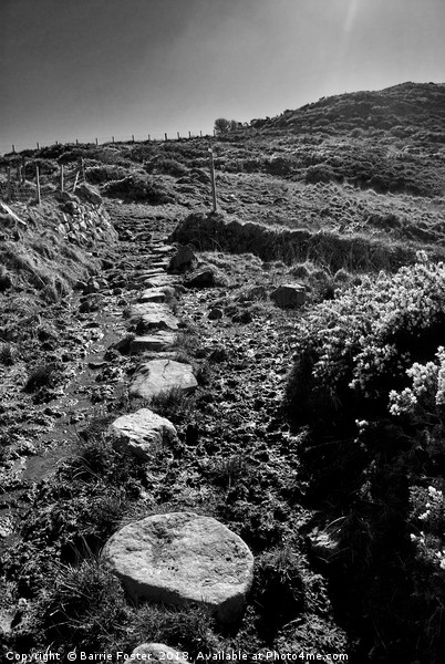 The Wales Coast Path at Carnfathach Canvas Print by Barrie Foster