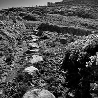 Buy canvas prints of The Wales Coast Path at Carnfathach by Barrie Foster