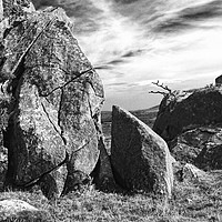Buy canvas prints of Tŷ Canol National Nature Reserve. by Barrie Foster