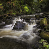 Buy canvas prints of The Upper Clydach River in Swansea by Leighton Collins