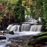 Buy canvas prints of Garell Glen,Kilsyth, Scotland by jim wilson