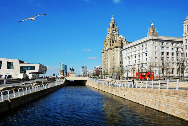 Liverpool's iconic waterfront Canvas print by Frank Irwin