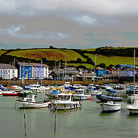 Buy canvas prints of Aberaeron Harbour (Marina section) by Frank Irwin