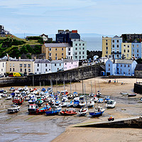 Buy canvas prints of Tenby Harbour, Tenby, Wales, UK by Frank Irwin