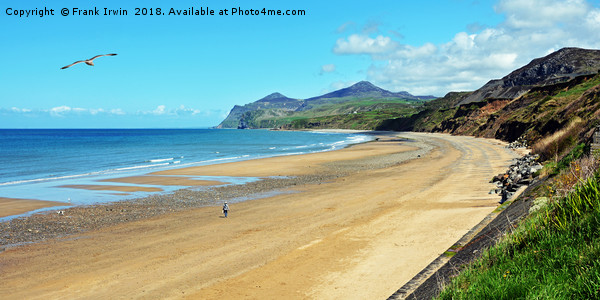The beach at Morfa Nefyn, North Wales Canvas print by Frank Irwin