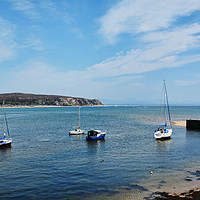 Buy canvas prints of Anchorage - Abersoch harbour, North Wales by Frank Irwin