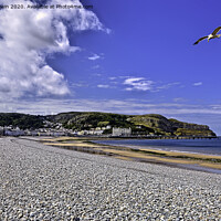 Buy canvas prints of Llandudno's famous promenade lined beach. by Frank Irwin
