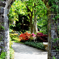 """Buy canvas prints of """"Floral archway."""" by Frank Irwin"""