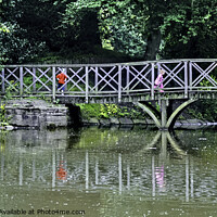 Buy canvas prints of Birkenhead Park reflections by Frank Irwin