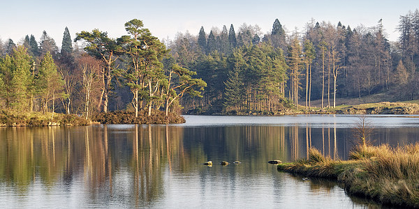 Tarn Hows, Lake District, Cumbria Canvas print by Martin Parratt