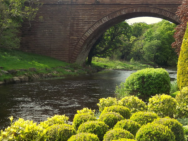 Bushes , Bridge and River Canvas print by Bill Lighterness