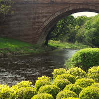 Buy canvas prints of Bushes , Bridge and River by Bill Lighterness