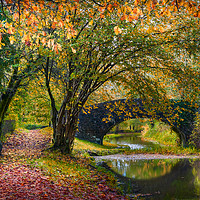 Buy canvas prints of Neath Canal by Purple OneTwoEight