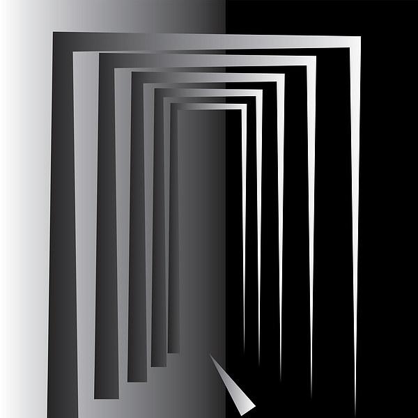 White on Black Canvas print by Marinela Feier