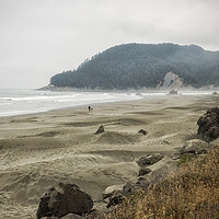 Buy canvas prints of Contentment by Belinda Greb