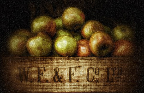 Painted Apples in Crate Canvas Print by Scott Anderson