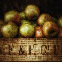 Buy canvas prints of Painted Apples in Crate by Scott Anderson