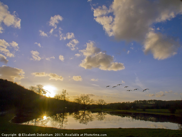 Geese over Sarratt Water meadow at Sunset Canvas Print by Elizabeth Debenham