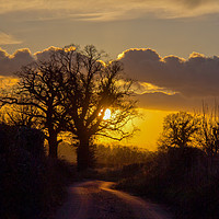 Buy canvas prints of All in the April Evening by Elizabeth Debenham