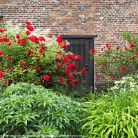 Buy canvas prints of Roses round the door at Chenies Manor by Elizabeth Debenham