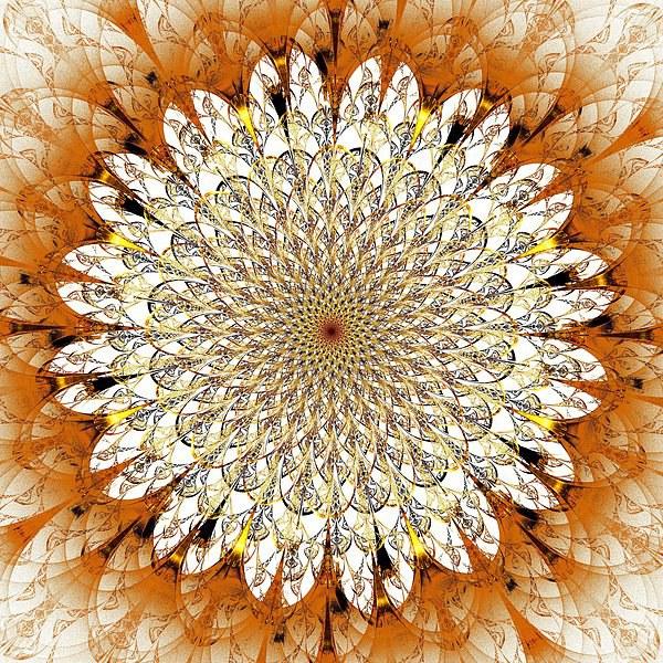 Bright Flower Canvas print by Anastasiya Malakhova