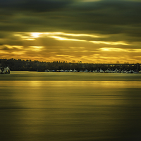 Buy canvas prints of Golden River by Anthony Rigg